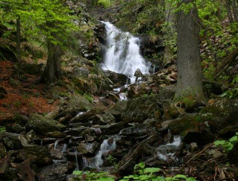 Vodopád v Bavorksém lese